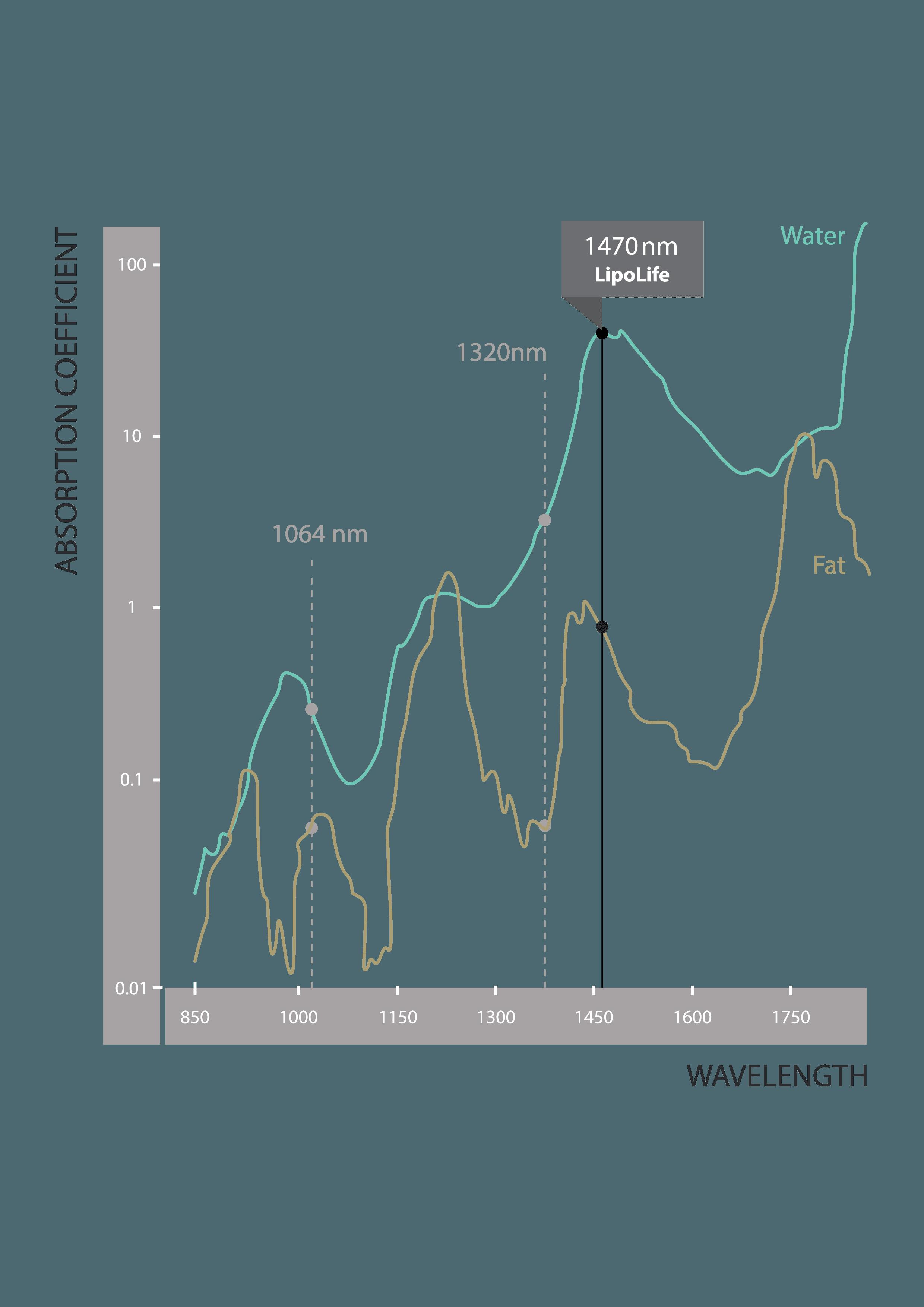 LipoLife absorption graph
